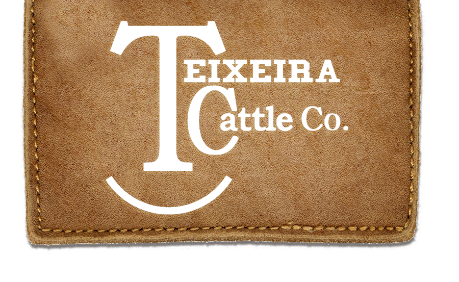 Teixeira Cattle Co.